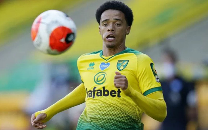 Bek Norwich City Jamal Lewis - Antara/Reuters