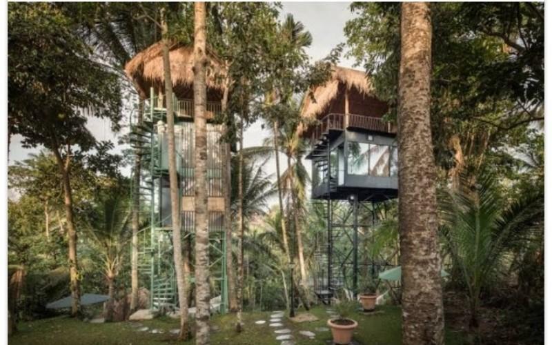 Hotel konsep rumah pohon - liftbali