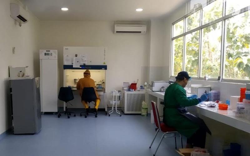 Laboratorium pemeriksaan polymerase chain reaction (PCR) di Laboratorium Fakultas Kedokteran UGJ Kota Cirebon. Laboratorium tersebut digunakan untuk pemeriksaan hasil swab di Kabupaten Cirebon. - Bisnis/Hakim Baihaqi