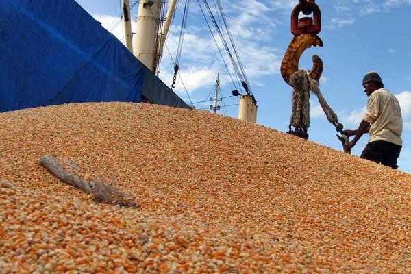 Pekerja memindahkan jagung ke atas kapal untuk diekspor, di Pelabuhan Makassar, Sulawesi Selatan, Jumat (23/3/2018). - JIBI/Paulus Tandi Bone