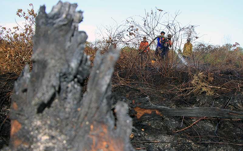 Petugas gabungan dari BPBD Aceh Barat, BKSDA Aceh, TNI/Polri dan Dinas Kehutanan Aceh memadamkan kebakaran lahan gambut di Desa Lapang, Kecamatan Johan Pahlawan, Aceh Barat, Aceh, Kamis (2/7/2020). ANTARA FOTO - Syifa Yulinnas