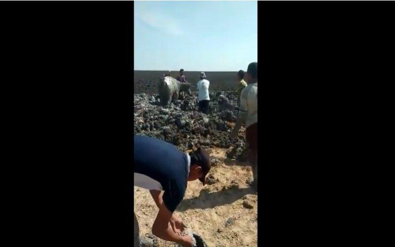Tangkapan layar kerbau diselematkan dari timbunan lumpur. - Youtube