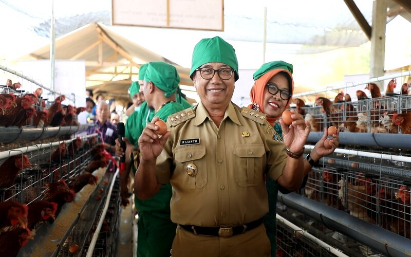 Bupati Blitar Rijanto di usaha peternakan ayam rakyat daerah tersebut November 2019. - Istimewa