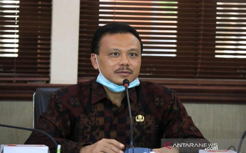 Ketua Harian GTPP Covid/19 Provinsi Bali Dewa Made Indra.