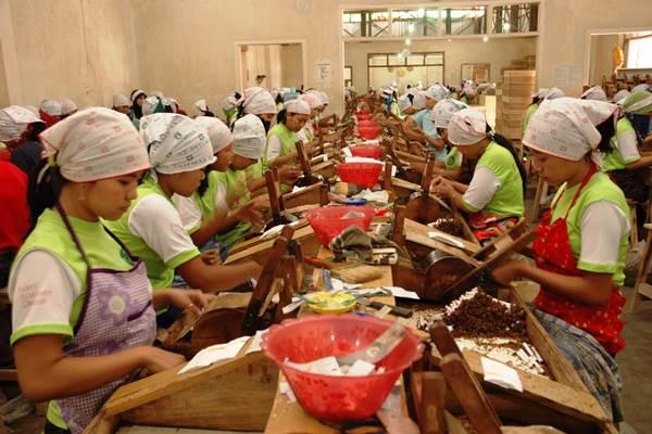 Pabrik rokok. Berdasarkan data Direktorat Jendral Bea Cukai, tercatat ada penurunan jumlah dari 1.540 pabrik (2011) menjadi 487 pabrik (2017).  - Dok. Bea Cukai