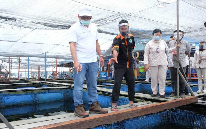 Direktur Utama Pupuk Kaltim Rahmad Pribadi saat berkunjung ke CSV Keramba Jaring Apung (KJA) yang mampu mendorong kemandirian nelayan melalui sektor budidaya lobster dan kerapu. - JIBI/Istimewa