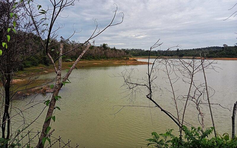 Dam Duriangkang di Kecamatan Sungai Beduk, Batam. - Bisnis/Bobi Bani.