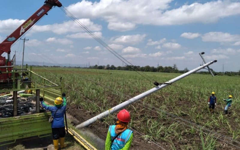 Pekerja memperbaiki jaringan listrik milik PT PLN yang terdampak hujan deras disertai angin kencang. - ANTARA/HO/PLN