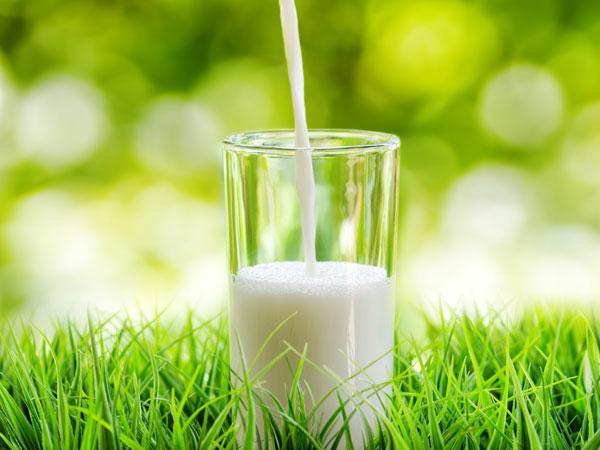 Susu - Istimewa
