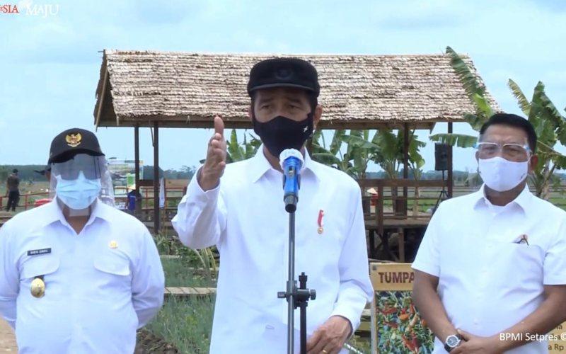 Presiden Joko Widodo memberikan keterangan pers terkait perkembangan proyek food estate di Pulang Pisau, Kalimantan Tengah / Youtube Setpres
