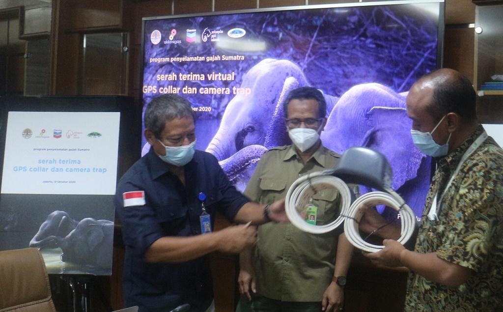 Mewakili PT. Chevron Pacific Indonesia (PT CPI), Ketua PGI Donny Gunaryadi (kanan) menyerahterimakan bantuan GPS Collar dan camera trap kepada Kepala BBKSDA Riau Suharyono (kiri) dalam acara semivirtual di Gedung Manggala Wanabhakti, Jakarta, Selasa (13 - 10). Serah terima tersebut disaksikan oleh Direktur Bina Pengelolaan Ekosistem Esensial (BPEE) KLHK Asep Sugiharta (tengah).