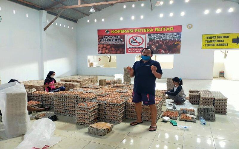 Telur ayam di Koperasi Putera Blitar siap didistribusikan ke berbagai daerah. Telur ayam asal daerah berpotensi menembus ekspor dengan penggarapan pasar secara baik. - Istimewa