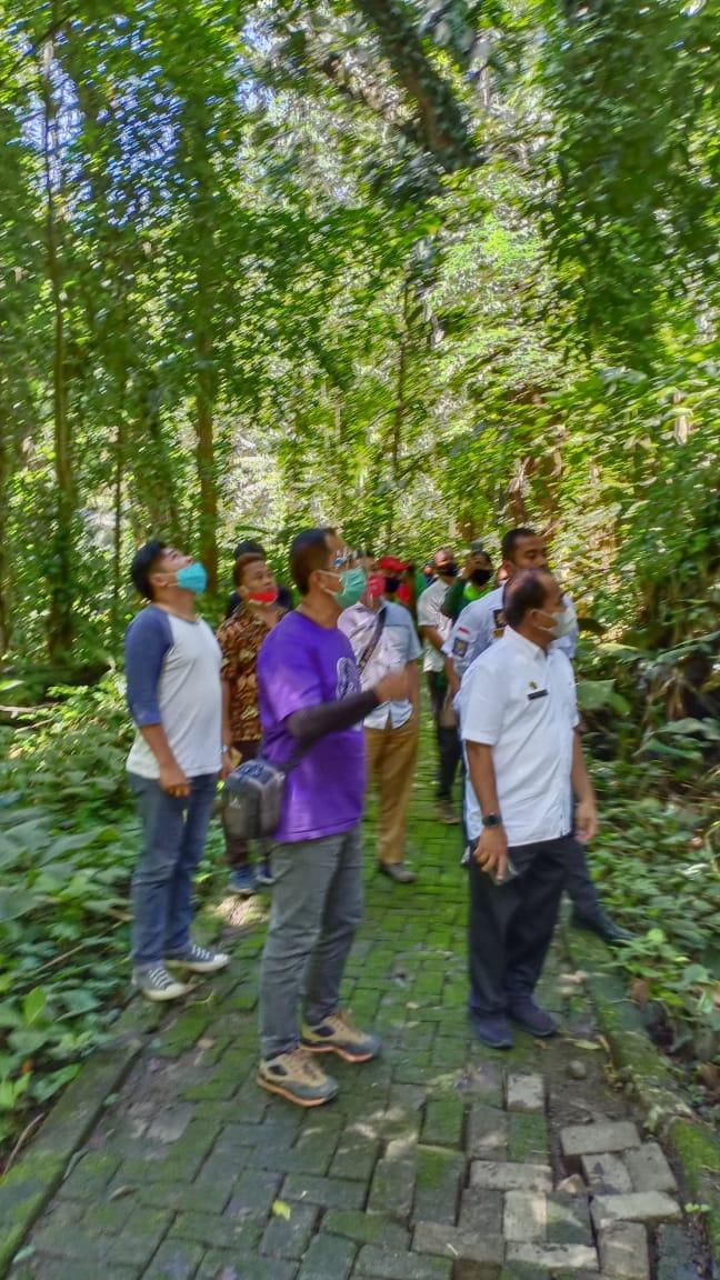 Taman Wisata Alam Sibolangit Kembali Dibuka. - istimewa