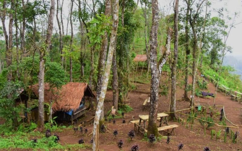 Potensi wisata gunung di Pangandaran ada di Desa Bojongkondang, Kecamatan Langkaplancar. - Istimewa