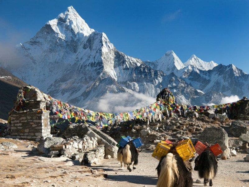 Nepal sudah membuka untuk pendakian gunung. - Times of  India