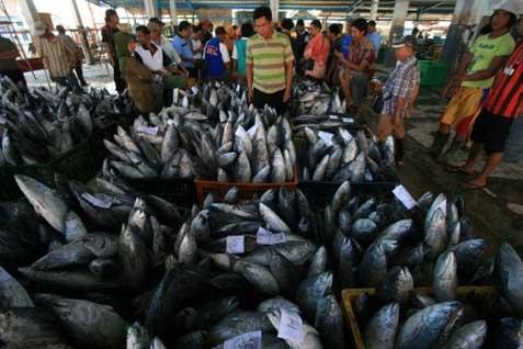 Ilustrasi ekspor ikan - Istimewa