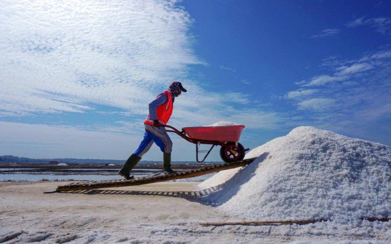 Pekerja tampak beraktivitas di sentra produksi PT Garam (Persero)  - Dok. PT Garam