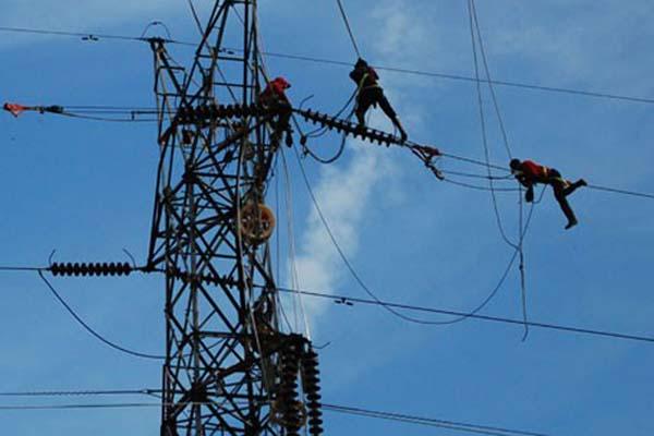 Ilustrasi perawatan jaringan listrik PLN - Antara/Rony Muharrman