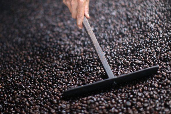 Biji kopi Robusta. - Bloomberg/Dimas Ardian