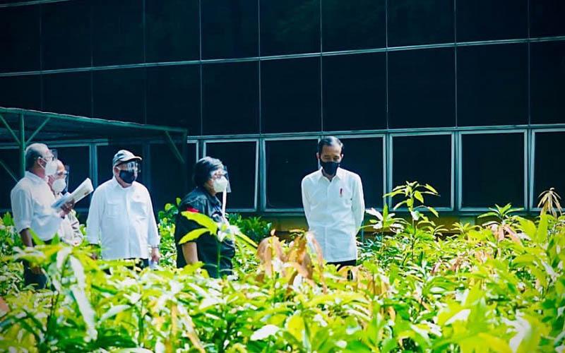 Menteri Lingkungan Hidup dan Kehutanan Siti Nurbaya ikut mendampingi Presiden Joko Widodo ketika mengunjungi Pusat Perbenihan di Rumpin, Kabupaten Bogor, Jawa Barat Jumat pagi (27/11/2020). - Istimewa