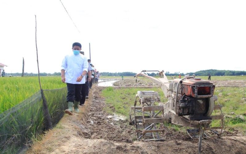 Gubernur Sumsel Herman Deru meninjau program listrik masuk sawah di Kecamatan Martapura, Kabupaten Ogan Komering Ulu Timur. istimewa