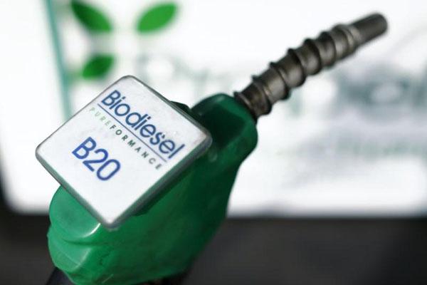 Ilustrasi bahan bakar Biodiesel B20.  - Reuters/Mike Blake