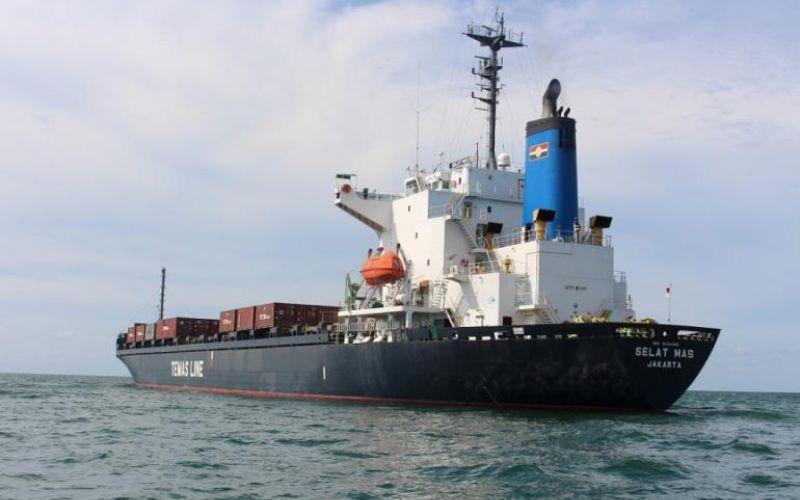 TMAS Perbanyak Armada, Temas (TMAS) Beli 7 Unit Kapal Tahun Depan - Market Bisnis.com