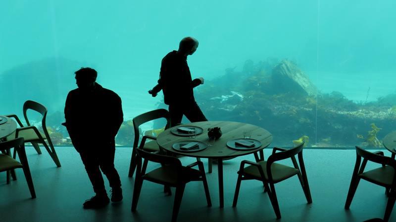 Ilustrasi - Pengunjung restoran di bawah laut pertama di Eropa, Under, di Baaly, Norwegia. - Reuters