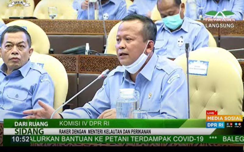 Eddy Prabowo di Komisi IV DPR RI, Selasa (7/6/2020). -  Tangkap Layar