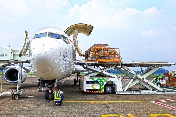 Ilustrasi - Aktivitas di sebuah pesawat kargo logistik. - Bisnis/Istimewa