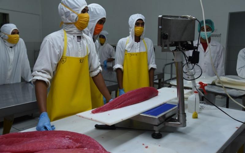 Pabrik pengolahan ikan.  - KKP