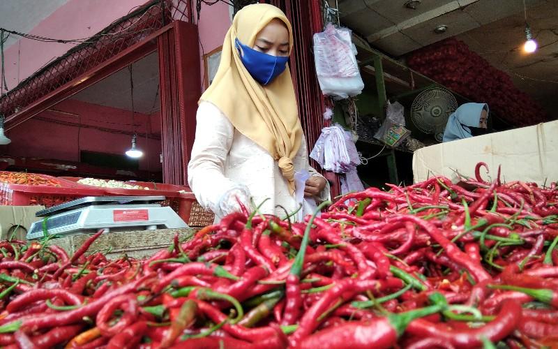 Seorang warga tengah membeli cabai merah di salah satu pedagang yang ada di Pasar Raya Padang, Sumatra Barat.  - Bisnis/Noli Hendra