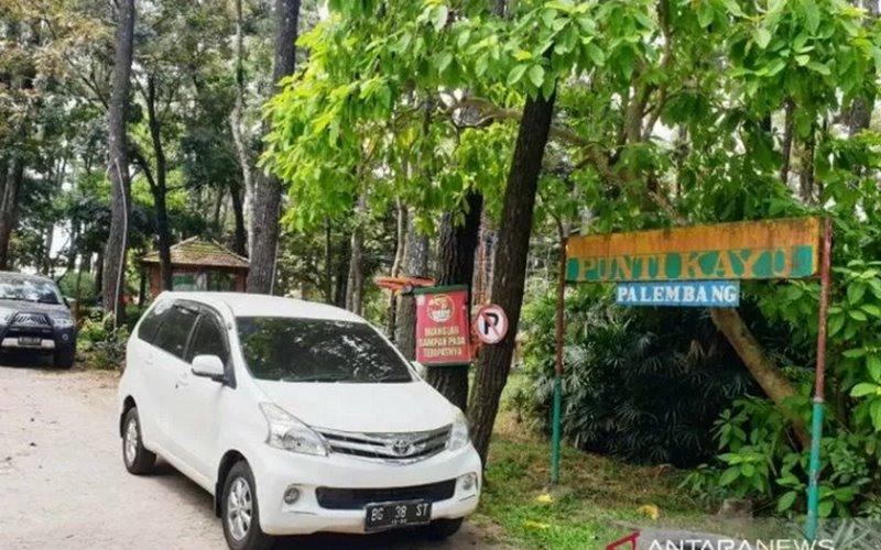 Hutan Wisata Palembang - Antara