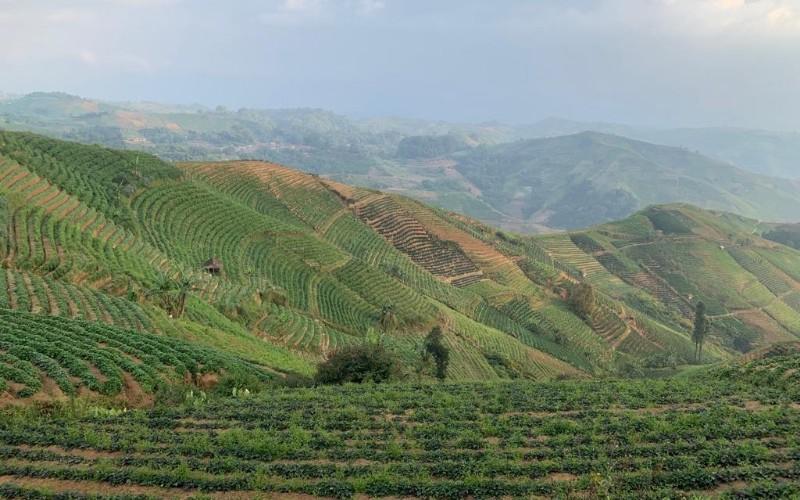 Objek wisata Panyaweuyan Kabupaten Majalengka - Bisnis/Wisnu Wage
