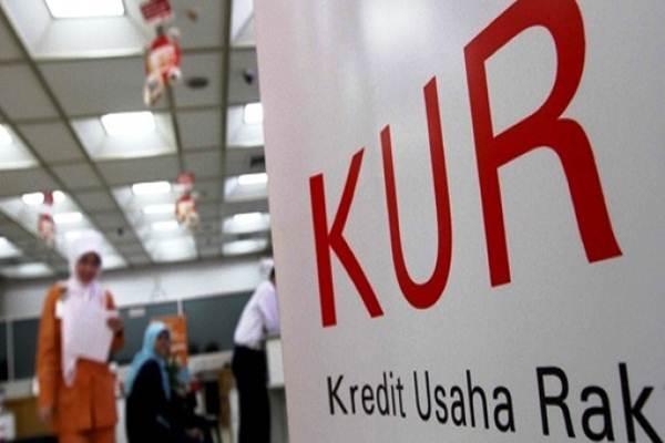 Kredit Usaha Rakyat (KUR) - Istimewa