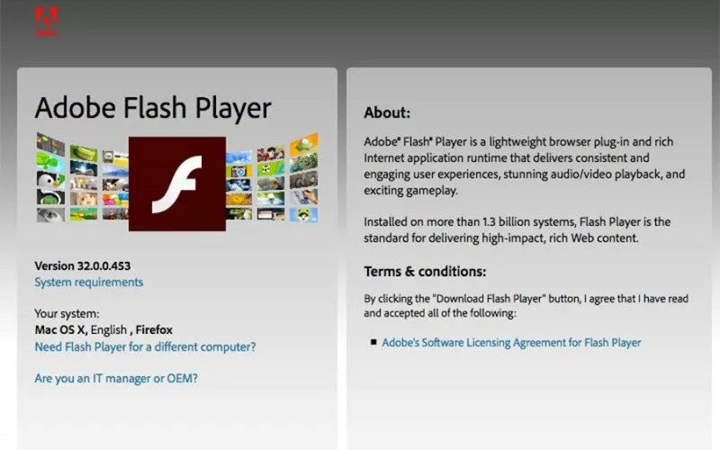 Halaman unduh Adobe Flash Player di laman Adobe yang akan segera dihapus atau dihilangkan mulai 31 Desember 2020.  - ANTARA/Adobe