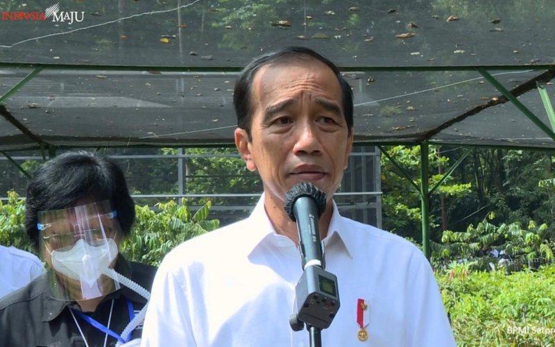 Presiden Joko Widodo meninjau Pusat Sumber Benih dan Persemaian di Rumpin, Bogor, Jawa Barat, Jumat (25/11 - 2020) / Youtube Setpres