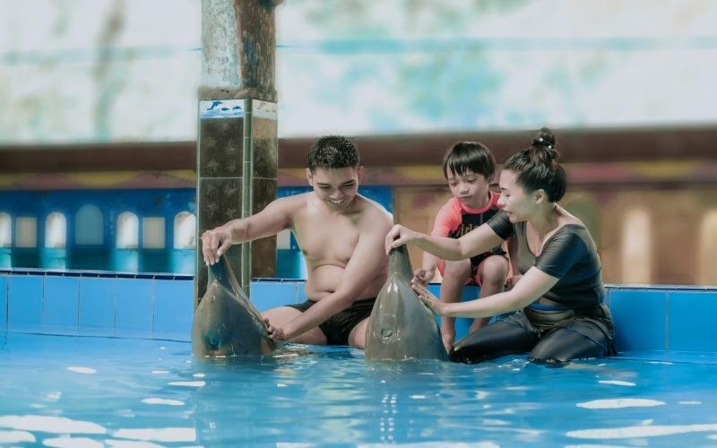 Grand Candi Hotel Semarang bekerja sama dengan Pantai Cahaya Kendal menawarkan paket menginap yang dilengkapi dengan pengalaman berenang bersama lumba/lumba.