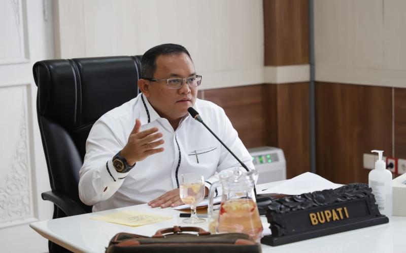 Bupati Kabupaten Musi Banyuasin Dodi Reza Alex. istimewa