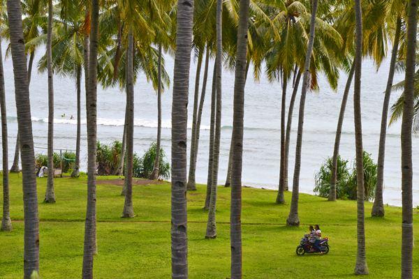 Pemandangan pohon kelapa di Pantai Klui, Desa Malaka, Kecamatan Pemenang, Tanjung, Lombok utara, NTB, Rabu (15/3). - Antara/Ahmad Subaidi