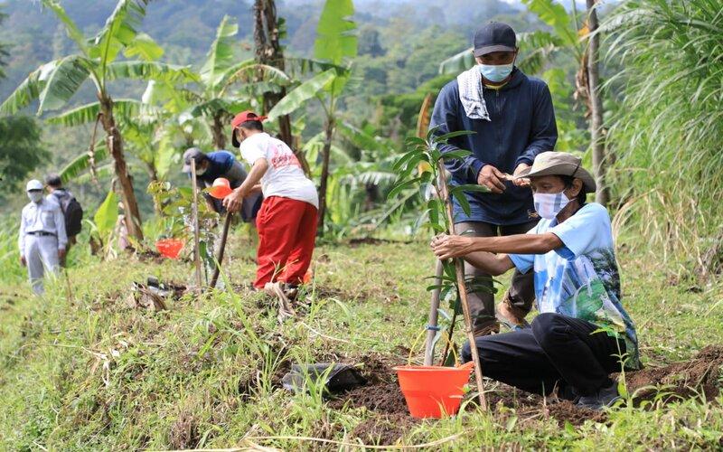 Penanaman 17.000 pohon di Hulu Sungai Parat DAS Rawapening, Dusun Banyudono, Desa Gedong, Kecamatan Banyubiru, Kabupaten Semarang. - Ist