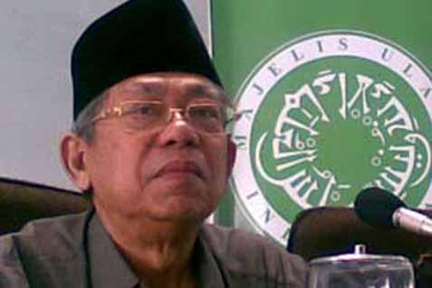 Wakil Presiden Ma'ruf Amin - MUI