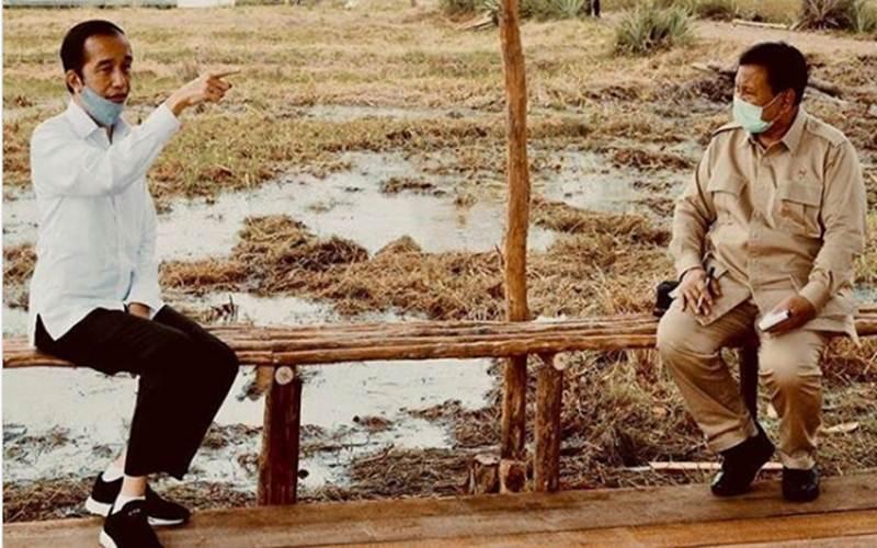 Presiden Jokowi dan Menhan Prabowo Subianto saat meninjau kawasan food estate di Kabupaten Pulang Pisau, Kalimantan Tengah, awal Juli 2020. - Instagram/Prabowo