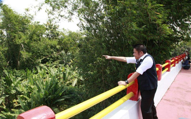 Gubernur Sumsel Herman Deru meninjau Jembatan Ogan IV di Kabupaten Ogan Komering Ulu (OKU) yang baru diresmikan. - Istimewa