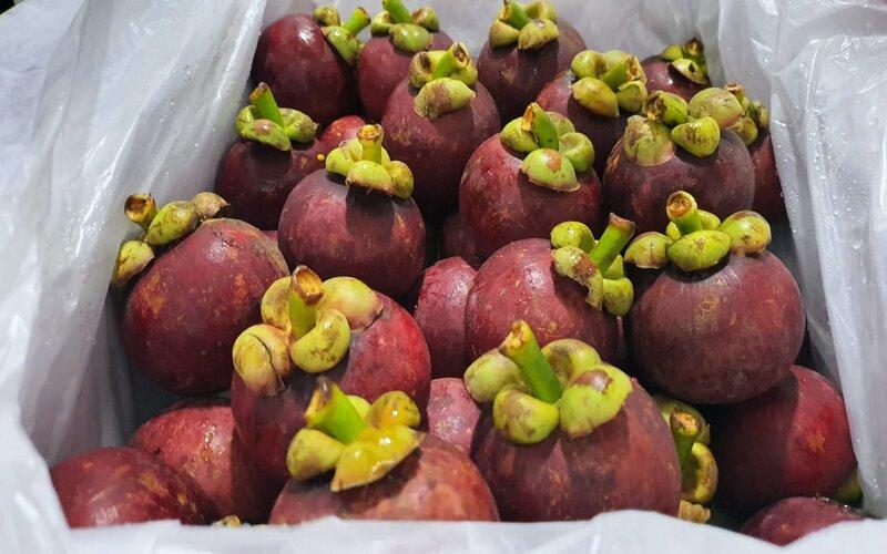 Manggis, salah satu komoditas andalan ekspor Bali.