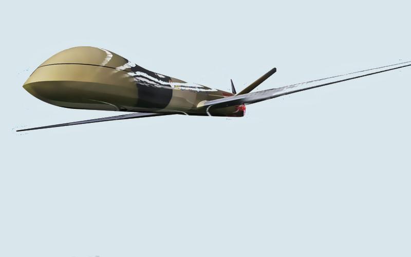 PUNA MALE Elang Hitam adalah satu dari empat superprioritas riset dan inovasi nasional, di samping Pesawat N219, Katalis Merah Putih, dan garam industri. - BPPT