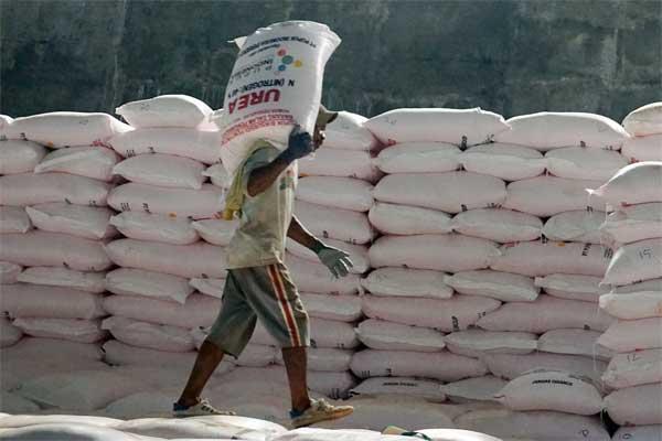 Pekerja melakukan bongkar muat pupuk urea di gudang pupuk lini III PT Pupuk Kujang, di Klari, Karawang, Jawa Barat, Jumat (19/5). - Antara