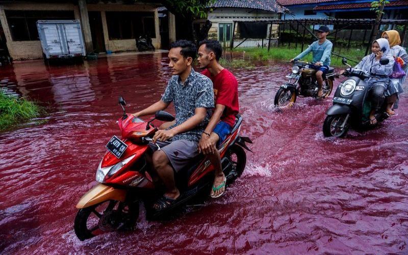 Ilustrasi banjir darah di Pekalongan