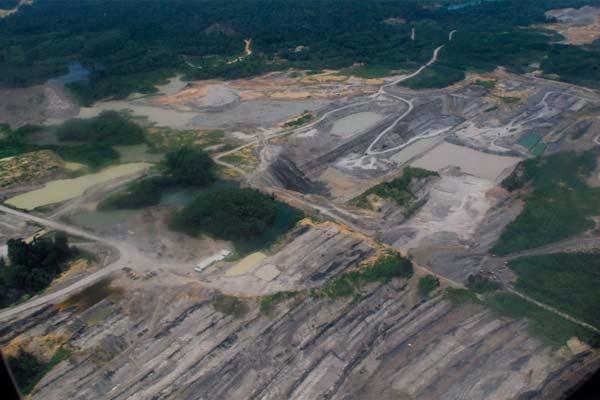 Tetapi mengapa hingga hari ini, tak ada gerakan masif  orang Banjar soal kerusakan lingkungan akibat batu bara?  - mongabay.co.id