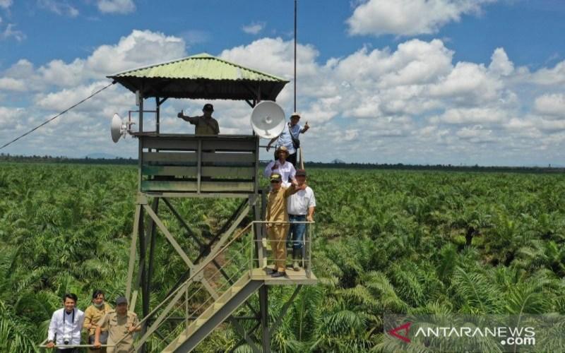 Kadisbun Kalbar saat melakukan pemantauan fasilitas pencegahan karhutla di areal perkebunan sawit. - ANTARA/Dedi